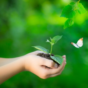 Revitaliza tu negocio y ponte a crecer (7)