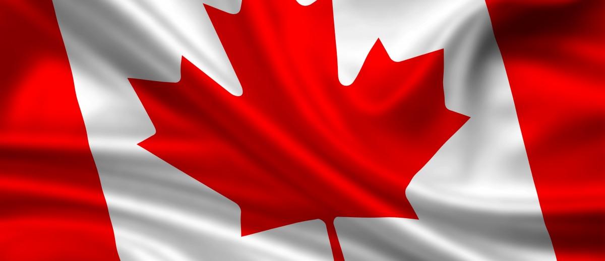 SFAI da la bienvenida a 37 nuevos socios en Canadá.