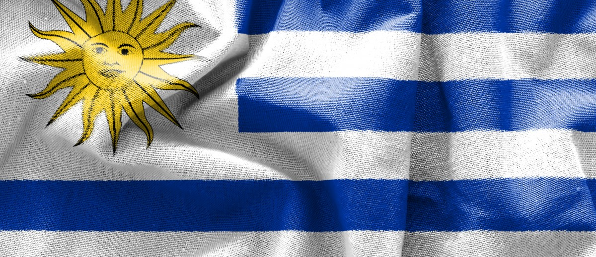 Imagen bandera SFAI incorpora nuevos socios en Uruguay